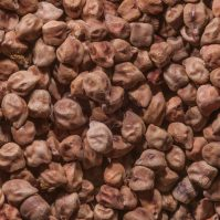 doha_qatar_april-brown_peas_souq_waqif_old