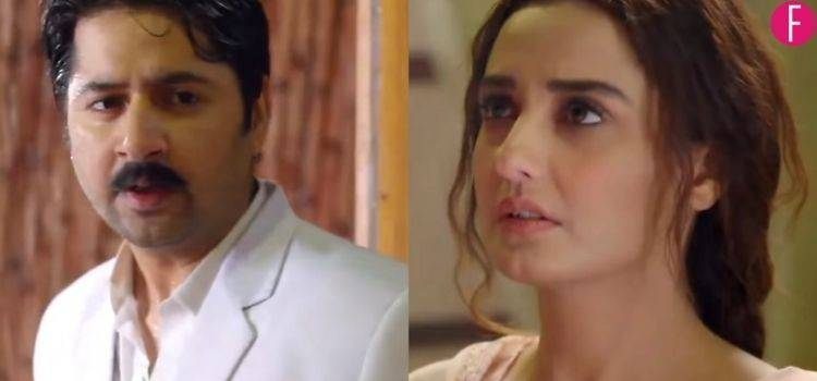 Mushk Cast Imran Ashraf and Momal Sheikh