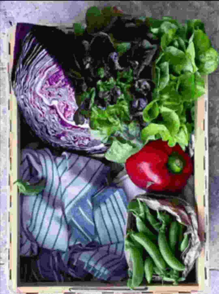 diet, women, food, health, weight maintainance