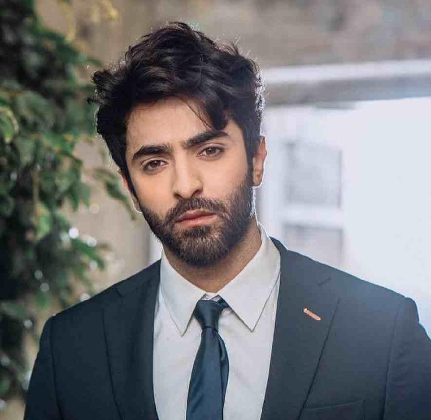 entertainment , Pakistani drama , actor