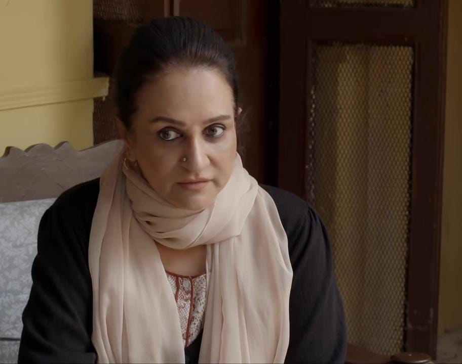 pardes, bushra ansari, ary, drama review